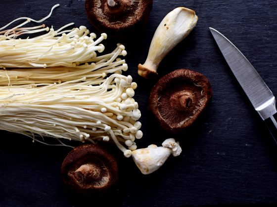 Mushrooms and Healthy Immune System